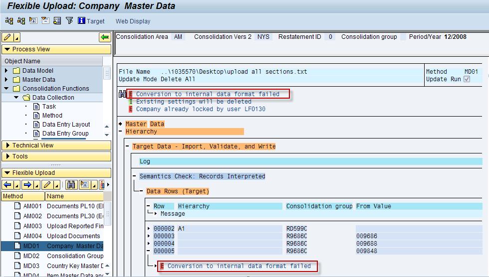 conversion to internal data format during a flexible upload - erp financials