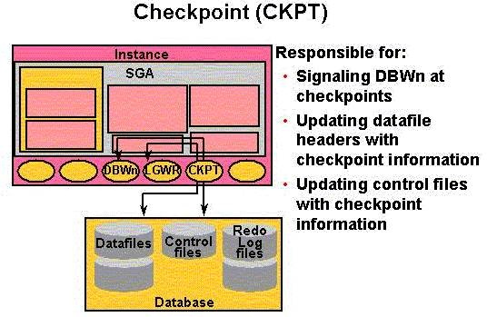 Image result for checkpoint in oracle