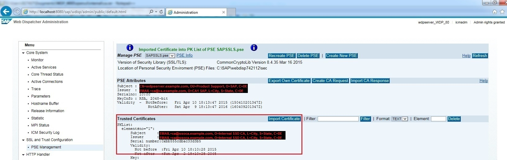 Managing PSE files at the Web Dispatcher - Application