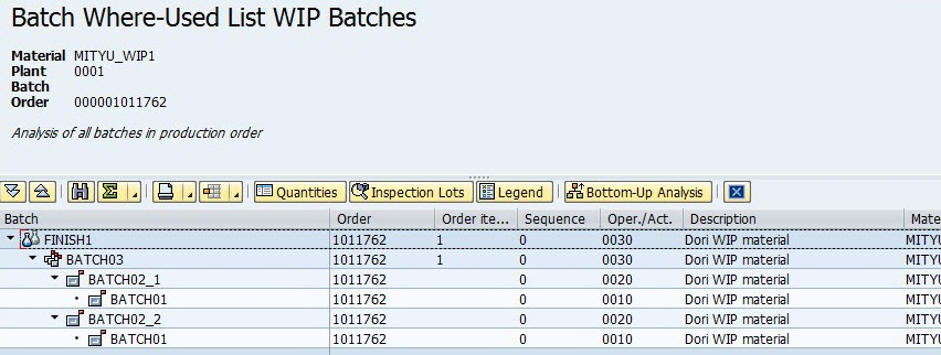 special cases of using wip batches