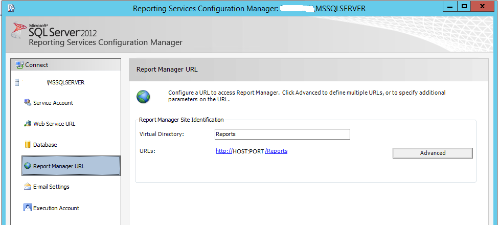 SQL Server Report Services or SSRS - SAP Connectivity - SCN Wiki