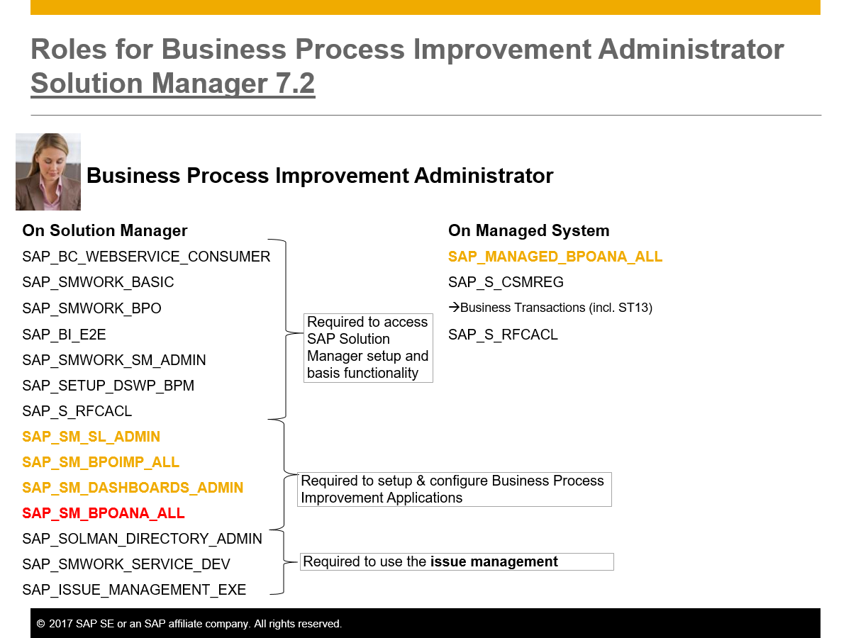 How-to Business Process Improvement - Solution Manager - SCN