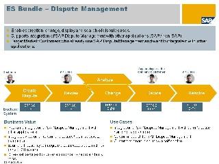 Dispute Management Enterprise Services Wiki Scn Wiki