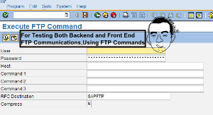 The SAPFTP Library - FTP Programming in ABAP - ABAP